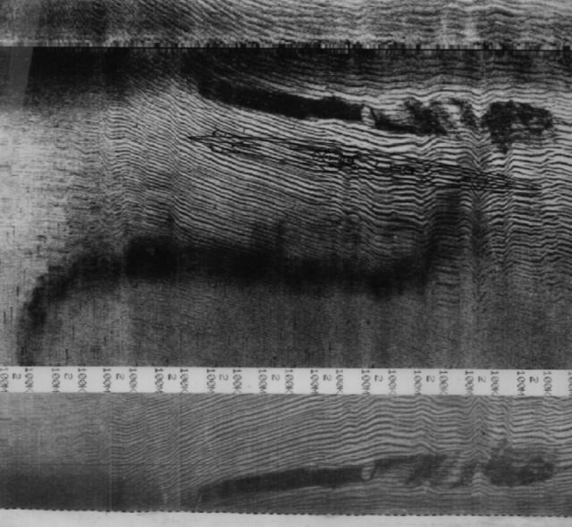 Click image for larger version.  Name:06 02 side-scan sonar images.jpg Views:3 Size:65.2 KB ID:554303