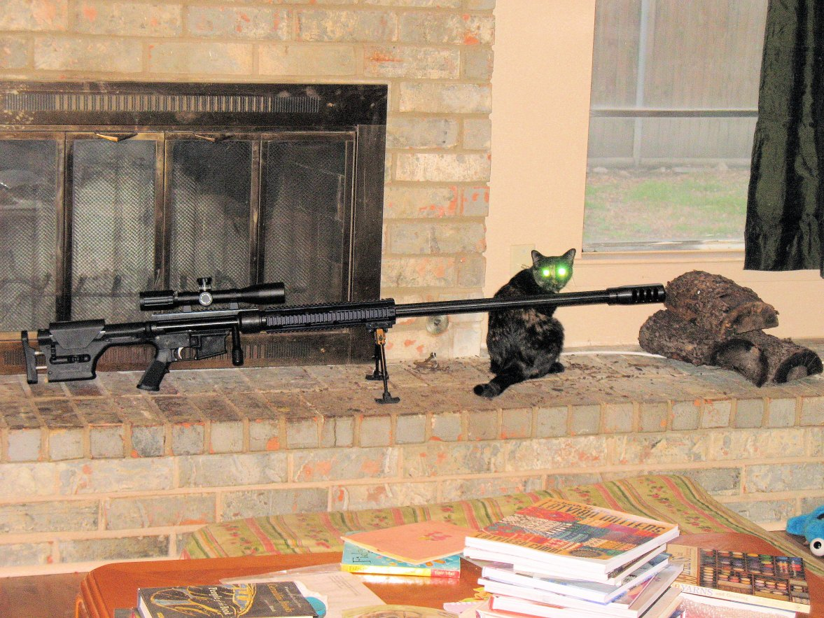 Click image for larger version.  Name:50 BMG with Night viionIMG_1887.jpg Views:58 Size:276.4 KB ID:276184