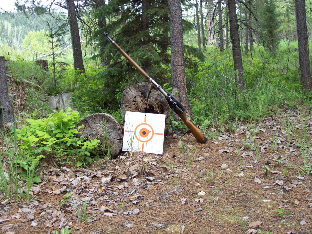 Click image for larger version.  Name:Mosin and target.jpg Views:15 Size:350.4 KB ID:2014537