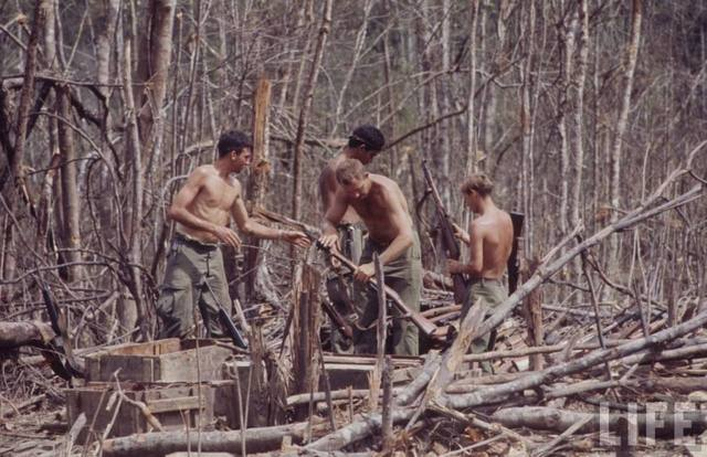 Click image for larger version.  Name:shauvalleyvietnammosins.jpg Views:391 Size:58.6 KB ID:447779